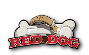 red-dog-is-a-very-popular-casino-game